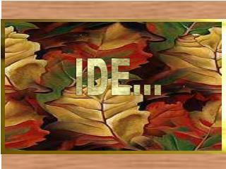 IDE...