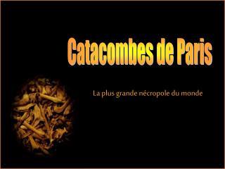 Catacombes de Paris