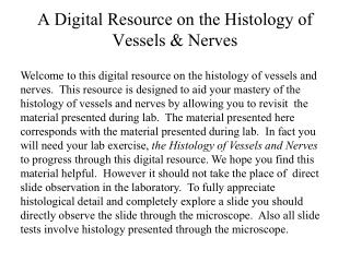 A Digital Resource on the Histology of Vessels & Nerves