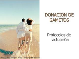 DONACION DE GAMETOS