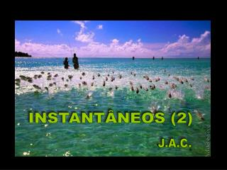 INSTANTÂNEOS (2)