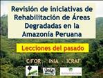 Revisi n de iniciativas de Rehabilitaci n de  reas Degradadas en la Amazon a Peruana