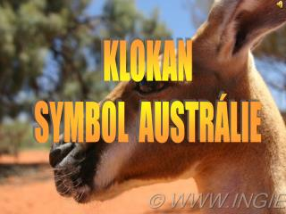 KLOKAN SYMBOL  AUSTRÁLIE