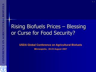 Rising Biofuels Prices – Blessing or Curse for Food Security?