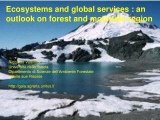 Riccardo Valentini Università della Tuscia Dipartimento di Scienze dell'Ambiente Forestale