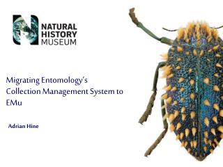 Migrating Entomology's Collection Management System to EMu