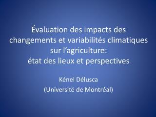 Kénel Délusca (Université de Montréal)