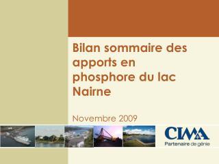 Bilan sommaire des apports en phosphore du lac Nairne