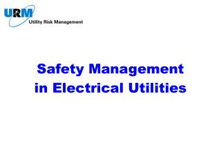 Safety Management in Electrical Utilities