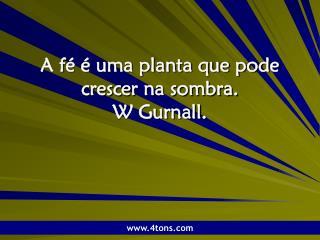 A fé é uma planta que pode crescer na sombra.  W Gurnall.