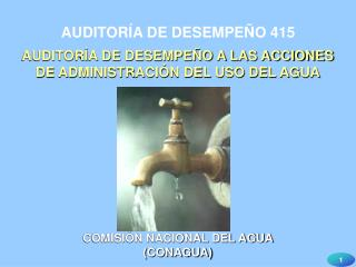 AUDITORÍA DE DESEMPEÑO 415