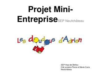 Projet Mini-Entreprise SEP Neufchâteau