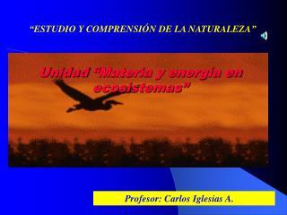 """Unidad  """" Materia y energía en ecosistemas """""""