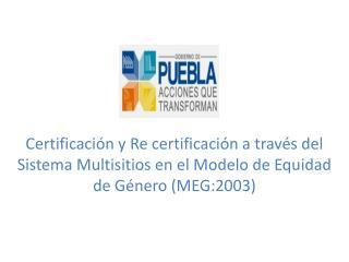 Propuesta de organigrama para el Comité General Coordinador del MEG