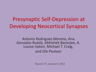 Presynaptic Self-Depression at Developing Neocortical Synapses