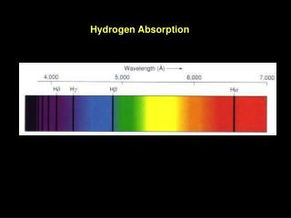 Hydrogen Absorption