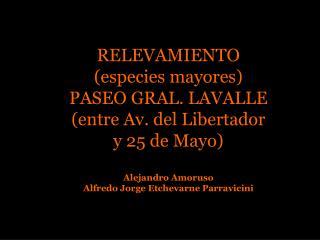 RELEVAMIENTO (especies mayores) PASEO GRAL. LAVALLE (entre Av. del Libertador y 25 de Mayo)