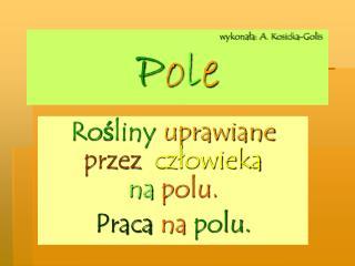 wykonała: A. Kosicka-Golis P o l e
