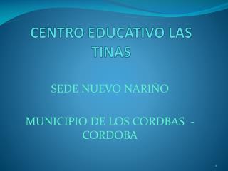 CENTRO EDUCATIVO LAS TINAS
