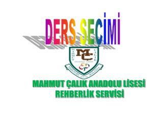 MAHMUT ÇALIK ANADOLU LİSESİ  REHBERLİK SERVİSİ