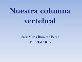 Nuestra columna vertebral