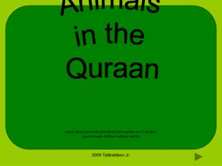 Animals in the Quraan