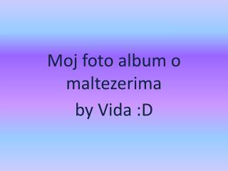 Moj foto  album o  maltezerima