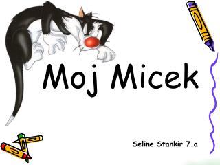 Moj Micek Seline Stankir 7.a
