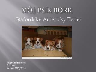 Môj psík  Bork