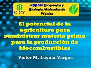 Víctor M. Loyola-Vargas