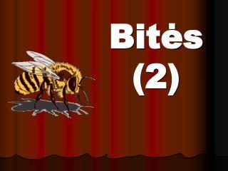 Bitės (2)