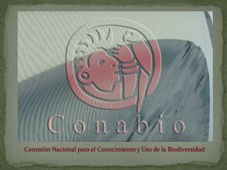 Comisión Nacional para el Conocimiento y Uso de la Biodiversidad