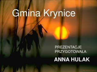 Gmina Krynice