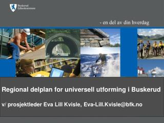 Regional delplan for universell utforming i Buskerud