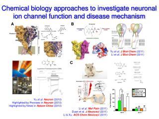 Li  et al .  Mol Pain  (2011) Duan et al.  J Neurosci  (2011)