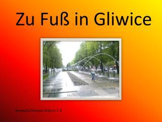 Z u Fuß in Gliwice
