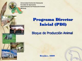 Programa Director Inicial (PDI)