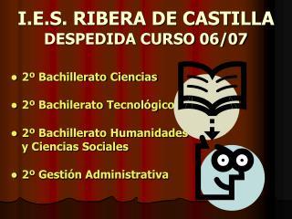 I.E.S. RIBERA DE CASTILLA DESPEDIDA CURSO 06/07