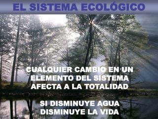 EL SISTEMA ECOLÓGICO