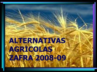 ALTERNATIVAS AGRICOLAS  ZAFRA 2008-09