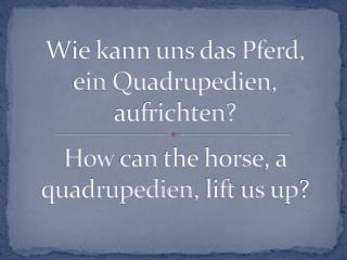 Wie kann uns das Pferd,  ein  Quadrupedien , aufrichten?