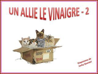 UN ALLIE LE VINAIGRE - 2