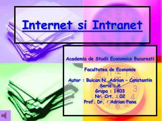 Internet si Intranet