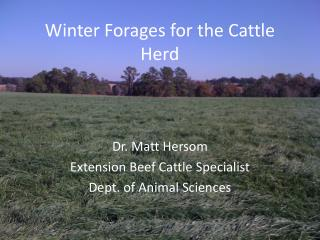 Winter Forages for the Cattle Herd