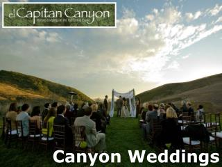 Canyon Weddings