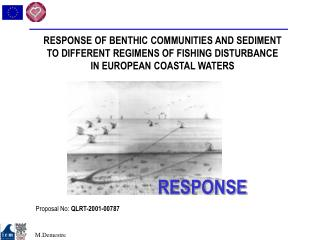 RESPONSE OF BENTHIC COMMUNITIES AND SEDIMENT TO DIFFERENT REGIMENS OF FISHING DISTURBANCE