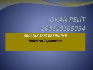 OKAN PELİT 200610105054