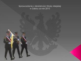 Sprawozdanie z dzialalnosci Strazy Miejskiej w Zabrzu za rok 2010