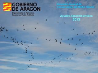 Dirección General de  Conservación del Medio Natural Ayudas Agroambientales 2013