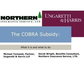 The COBRA Subsidy: